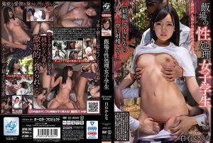 ดูหนังโป๊ออนไลน์ฟรี APNS-197 Shiraishi Kanna ดูหนังโป๊ กระแทกหี